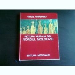 PICTURA MURALA DIN NORDUL MOLDOVEI - VIRGIL VATASIANU