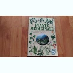 PLANTE MEDICINALE-PAOLA MANCINI