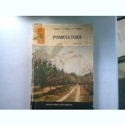 POMICULTURA. MANUAL PENTRU LICEELE AGRICOLE ANII III SI IV - I. MILITIU