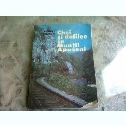 Pompei Cocean - Chei si defilee in Muntii Apuseni