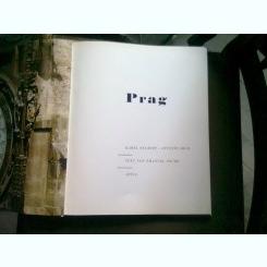 PRAG - KAREL NEUBERT  (PRAGA ALBUM)
