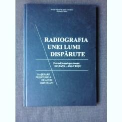 RADIOGRAFIA UNEI LUMI DISPARUTE - EDITOR CATALIN LAZAR