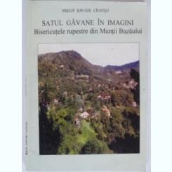 SATUL GAVANE IN IMAGINI - ION GH. CEAUSU