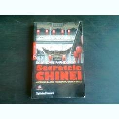 SECRETELE CHINEI - JOHN FARNDON