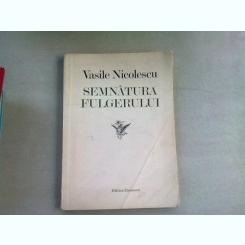 SEMNATURA FULGERULUI - VASILE NICOLESCU