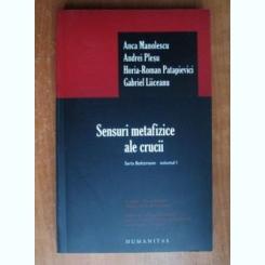 SENSURI METAFIZICE ALE CRUCII - ANCA MANOLESCU