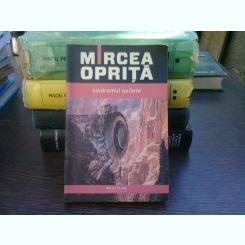 Sindromul Quijote - Mircea Oprita