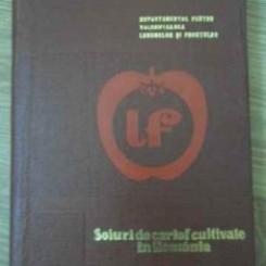 SOIURI DE CARTOFI CULTIVATE IN ROMANIA