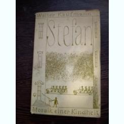 Stefan. Mosaik einer Kindheit - Walter Kaufmann, carte in limba germana