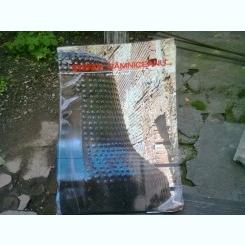 STEFAN RAMNICEANU - FERECATURA ( PICTURA-OBIECT )   ALBUM