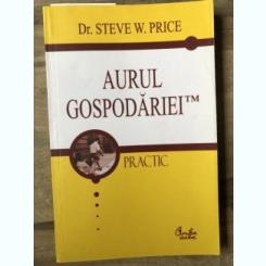 Steve W. Price - Aurul gospodariei