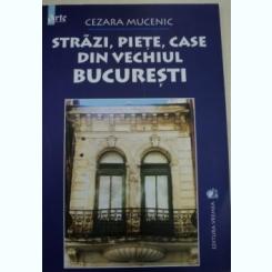 STRAZI,PIETE,CASE DIN VECHIUL BUCURESTI DE CEZARA MUCENIC 2004