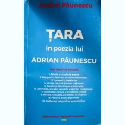 TARA IN POEZIA LUI ADRIAN PAUNESCU, ANDREI PAUNESCU