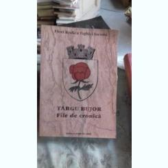 TARGU BUJOR. FILE DE CRONICA - FLORI RODICA TIGHICI IACOMI