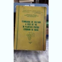 TEHNOLOGIA DE CULTURA A VITEI DE VIE IN PLANTATII PENTRU STRUGURI DE MASA