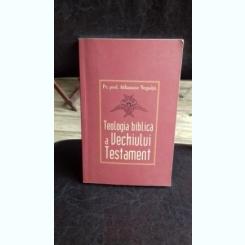 TEOLOGIA BIBLICA A VECHIULUI TESTAMENT - ATHANASE NEGOITA