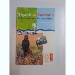 TIGANII DIN ROMANIA O MINORITATE IN TRANZITIE - EMMANUELLE PONS