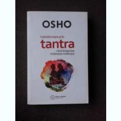 TRANSFORMARE PRIN TANTRA, CAND DRAGOSTEA INTALNESTE MEDITATIA - OSHO