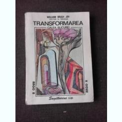 TRANSFORMAREA, CALEA BUCURIEI - WILLIAM BRIGH JOY