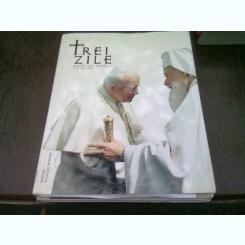 TREI ZILE DINTR-UN MILENIU 7-9 MAI 1999