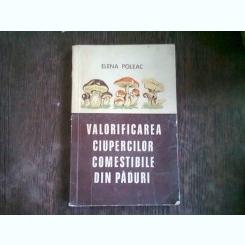 Valorificarea ciupercilor comestibile din paduri - Elena Poleac
