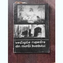 VESTIGII RUPESTRE DIN MUNTII BUZAULUI - CORNELIU STEFAN