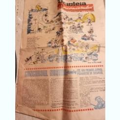 ZIARUL SCANTEIA PIONIERULUI 3 IULIE/1963