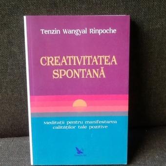 Creativitatea spontana - Tenzin Wangyal Rinpoche